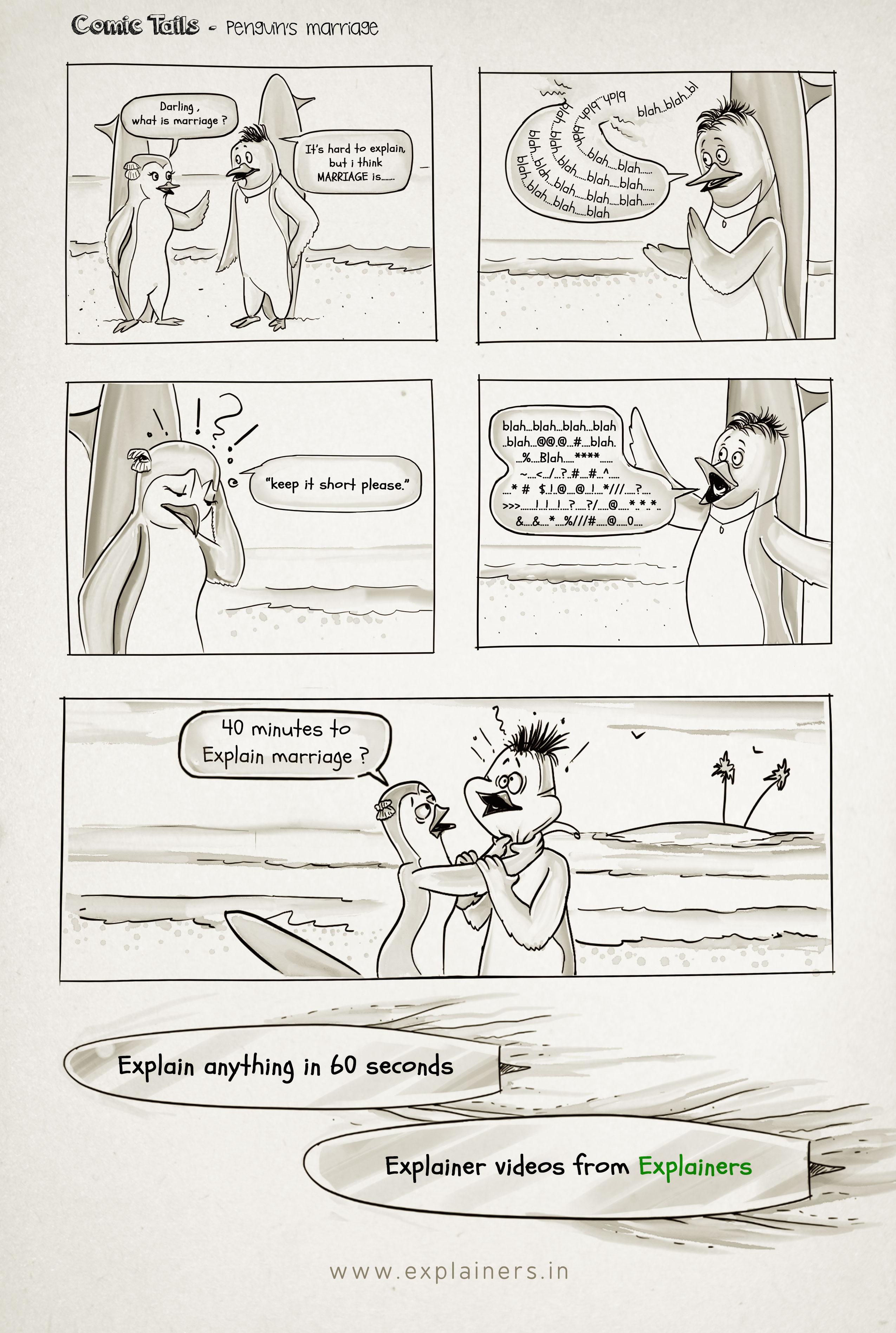 Webcomic, Penguin's Marriage, Explainers